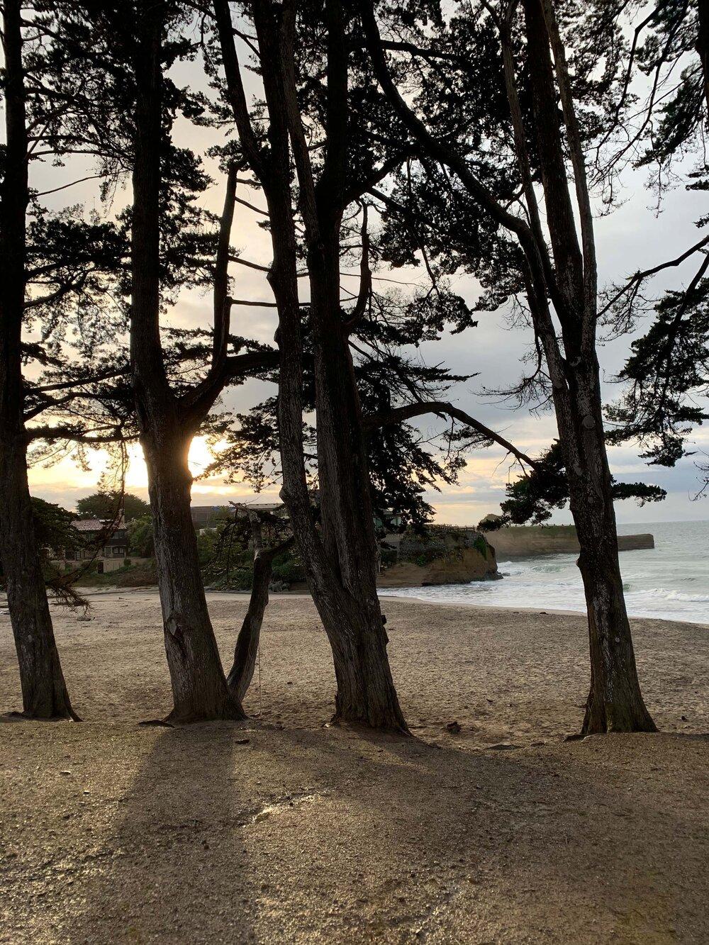 Santa Cruz Stroll